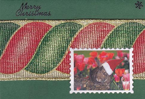 Greeting Card (Single) - Christmas