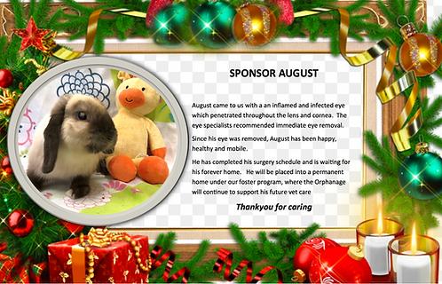 Sponsor August