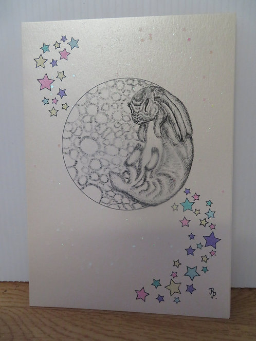 Picture Card: The Rabbit on the Moon-2