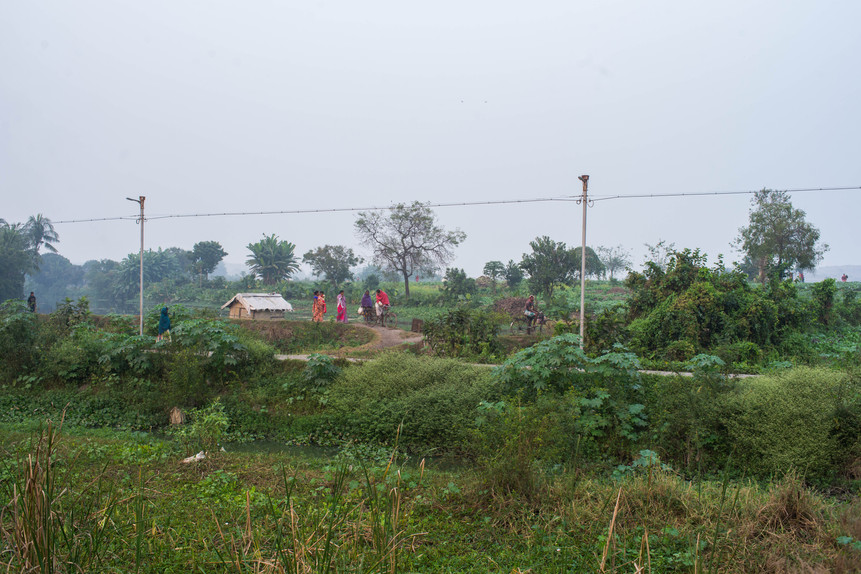 KrishanuNagar_Wetlands-3.jpg