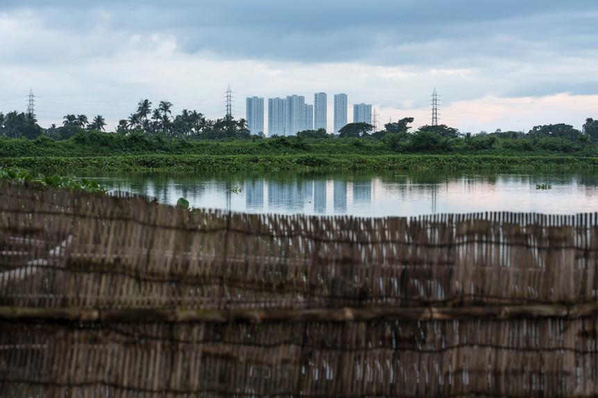 KrishanuNagar_Wetlands-15.jpg