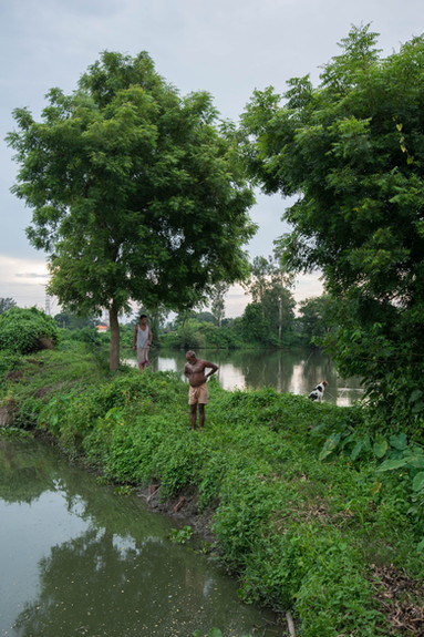 KrishanuNagar_Wetlands-4.jpg