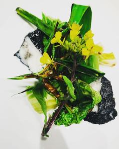 Lotte au charbon végétal, légumes de la ferme d'artaud,ail noir.jpg