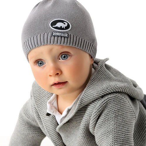 Dinosaur Knit Baby Boys Hat
