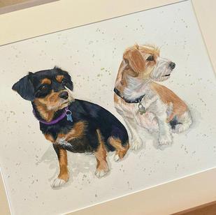 Pet Portrait Gift Vouchers