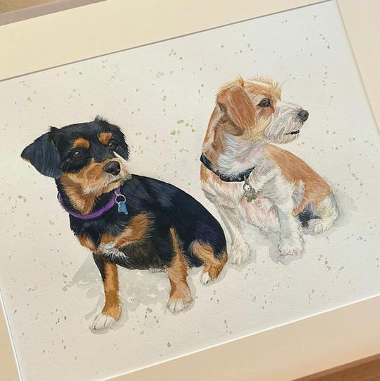 two pet portrait.jpg