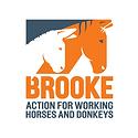 brooke horse.png