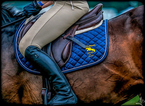 saddle pad.jpg