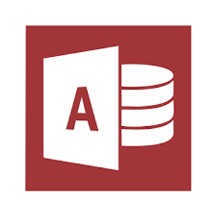 Microsoft Access  Business 2019
