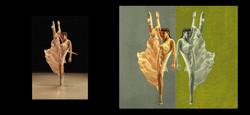 Dancer Retouching