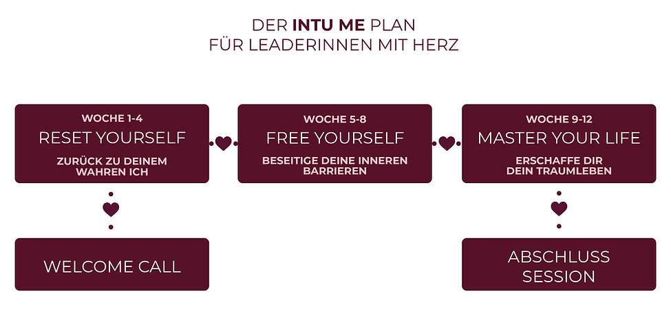 2020-11-11_intu_me_Plan_v2.jpg