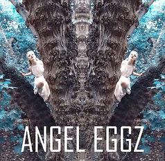 Angel Eggz Nancy Gorman Nova Halo