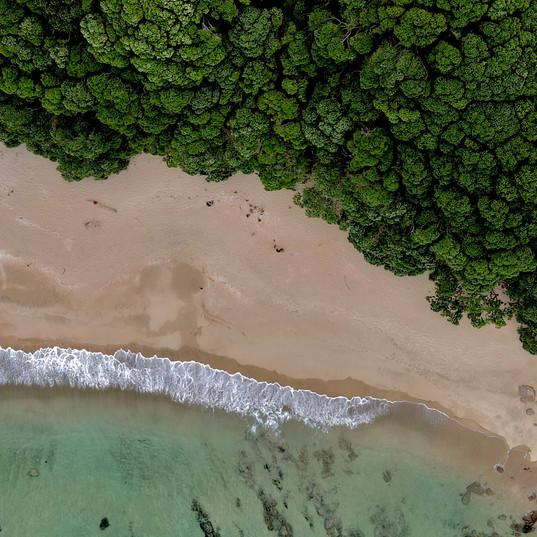 Coastal Whanagamata