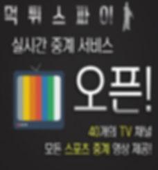 먹튀스파이 스포츠 실시간 티비-min-min.jpg