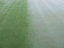 dew removal trial 020.JPG