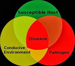 Plant_Disease_Triangle.jpg