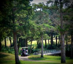 019-nari golf 2017 020