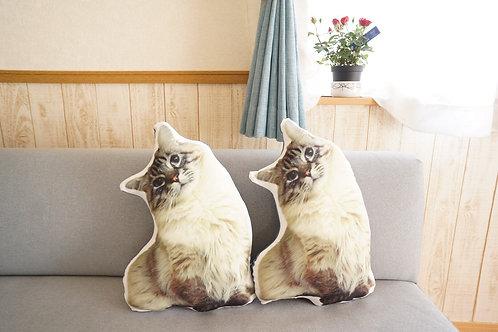 Cushion : Crazy for my companion (regular)
