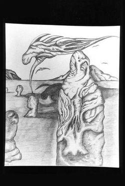 drawings 81