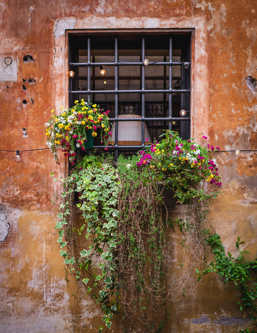 Flower at the window, Rome, Old Town