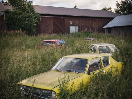 Autos auf der Wiese