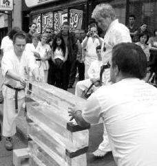 Shihan Ice Breaking 2003 smaller B+W.jpg