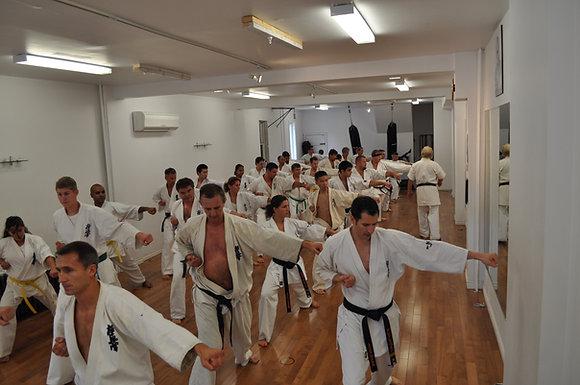 Adult Karate 3 Month Membership