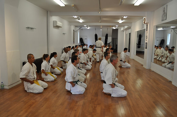 Adult Karate 1 MonthMembership Dues