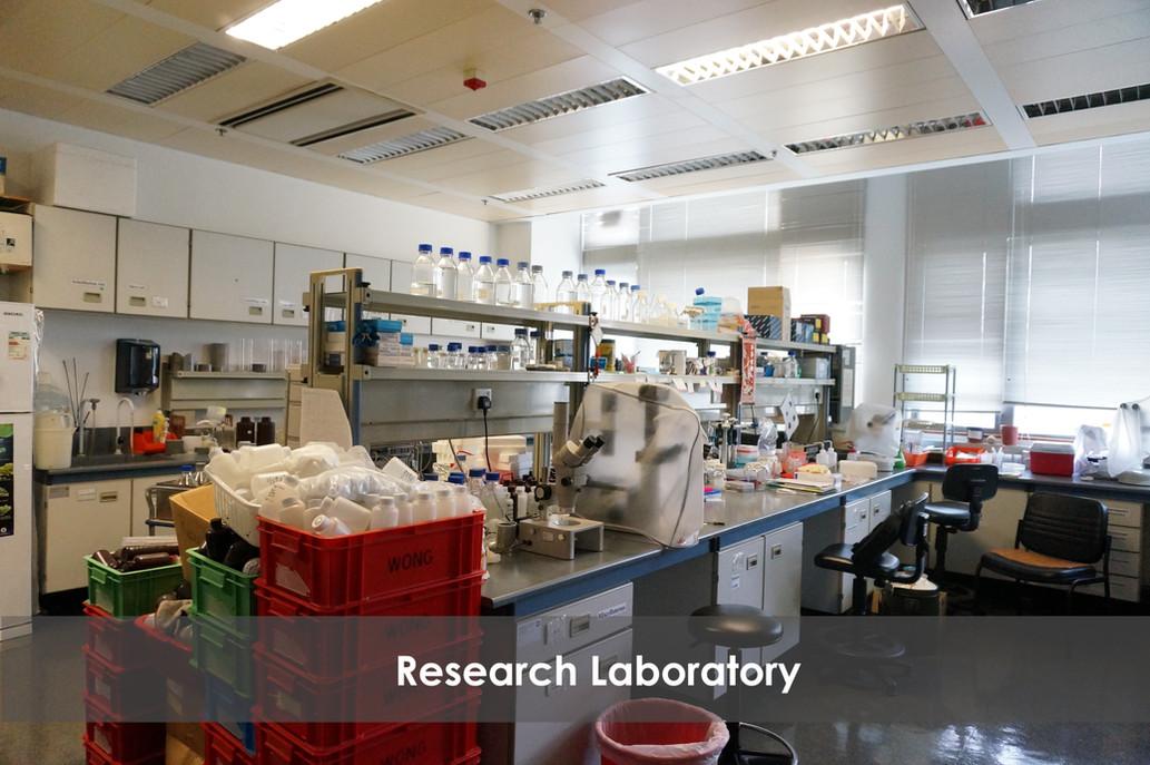 Research Laboratory 2 GIMP.jpg