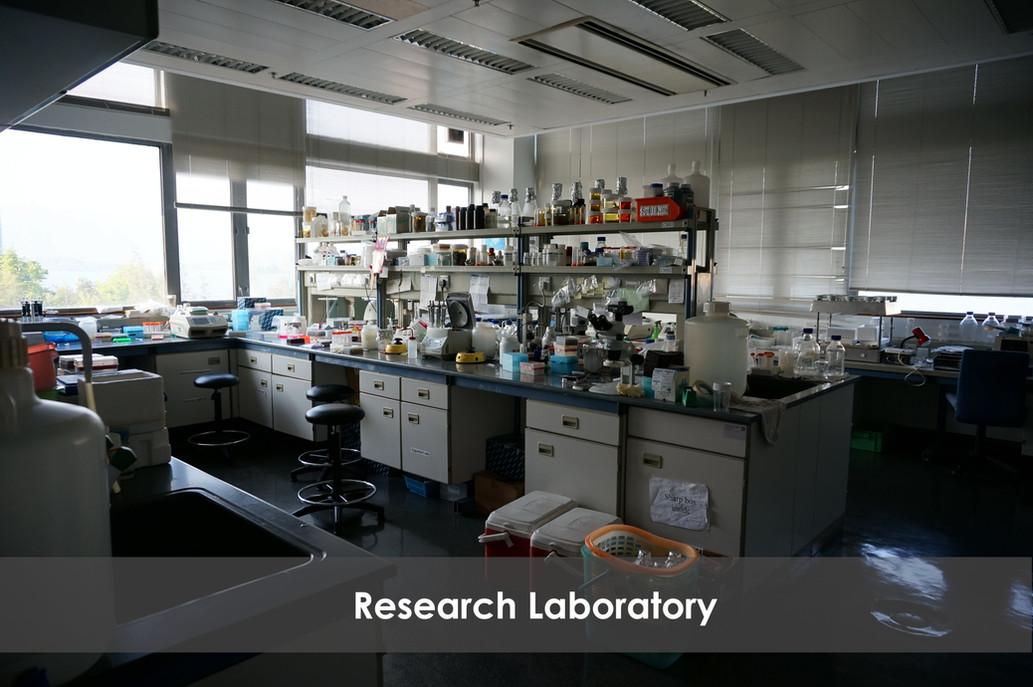 Research Laboratory 1 GIMP .jpg