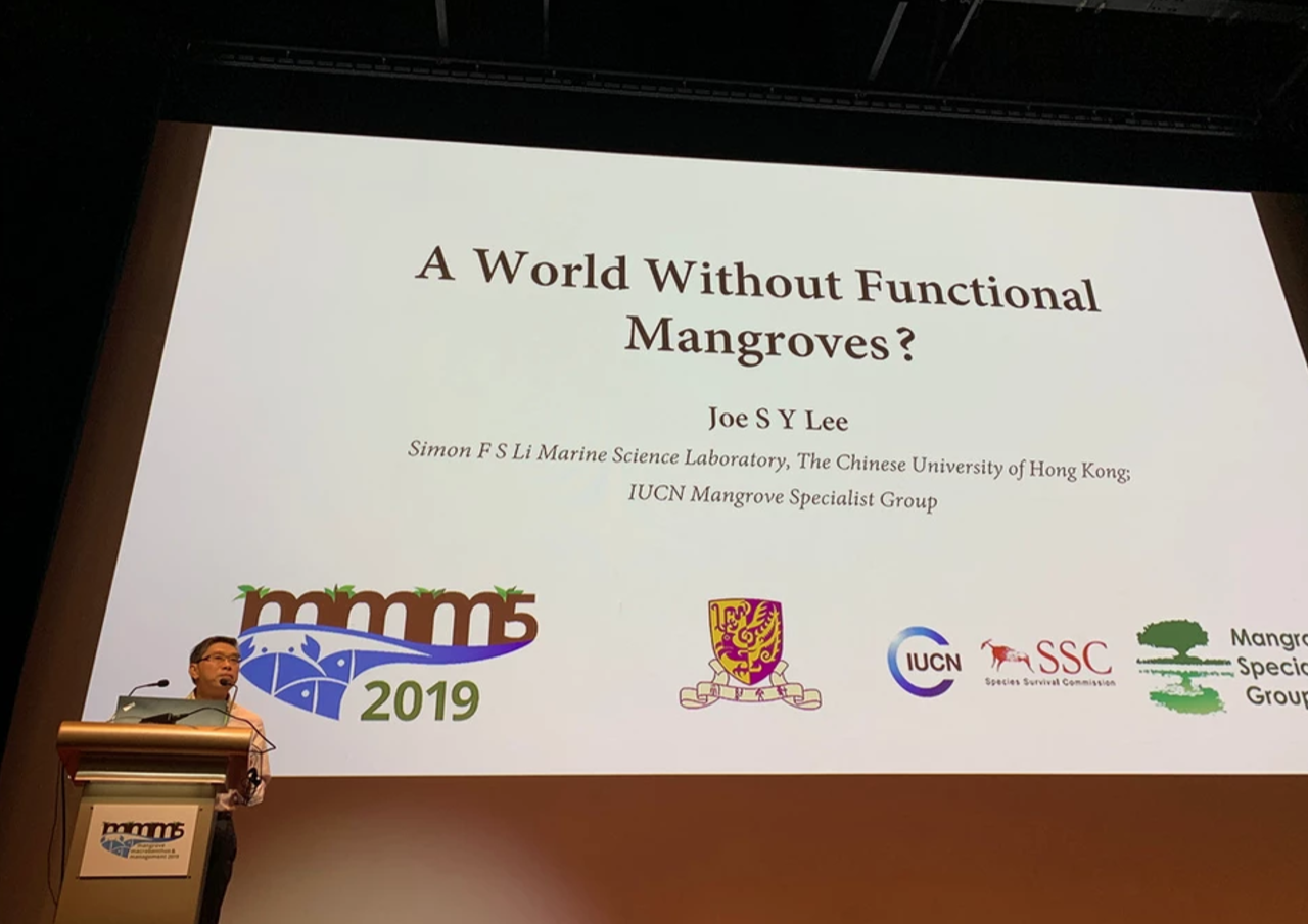 Keynote address: A world without functional mangroves?