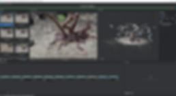 3D model screenshot 2.png