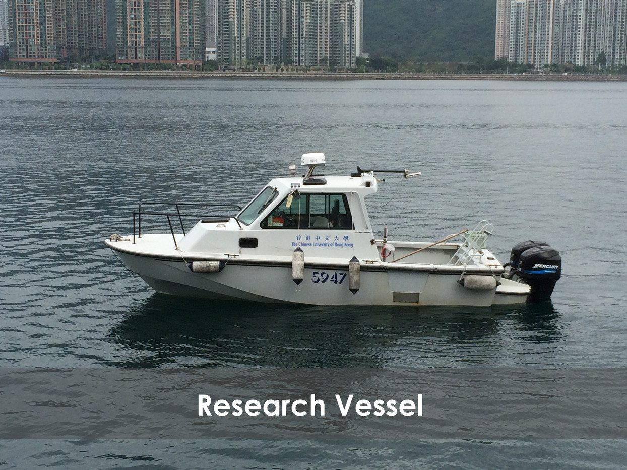 Research Vessel GIMP.jpg