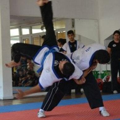 Chaqueta de ShuaiJiao (Lucha China)