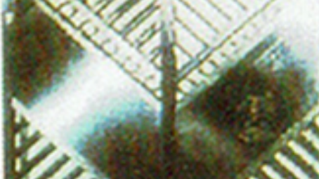 WG 25