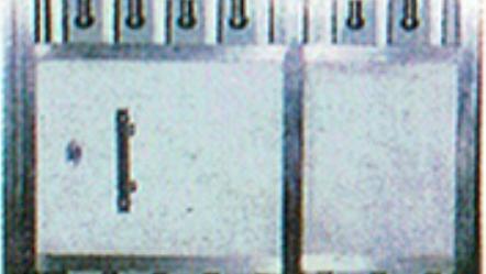 WG 40