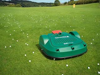Golf_43289_2.jpg
