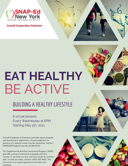 SNAP-Ed NY Eat Healthy, Be Active 1.jpg