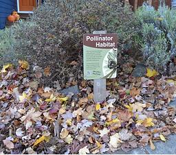 Pollinator Habitat.png