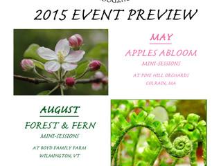 Three Mini-Session Events of 2015