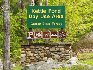 Groton State Forest Adventures