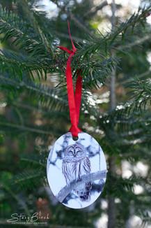 Owl Side 1