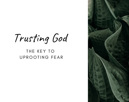 Trusting God-the Key to Uprooting Fear