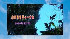 わがまちジャーナル8月号編成のお知らせ