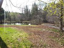 Pidgeon Pond.jpg