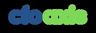 CFO Axis Logo