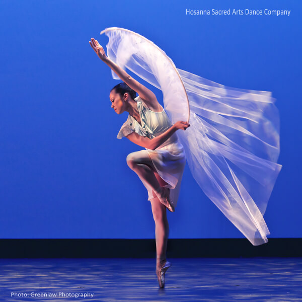 HSA - Angelina Hannum with Tulle