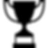 trophy cup - Copy (2).png
