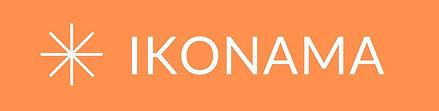 orange icon convert to jpg - edit.jpg