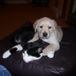 Sam regrets agreeing tobaby sit